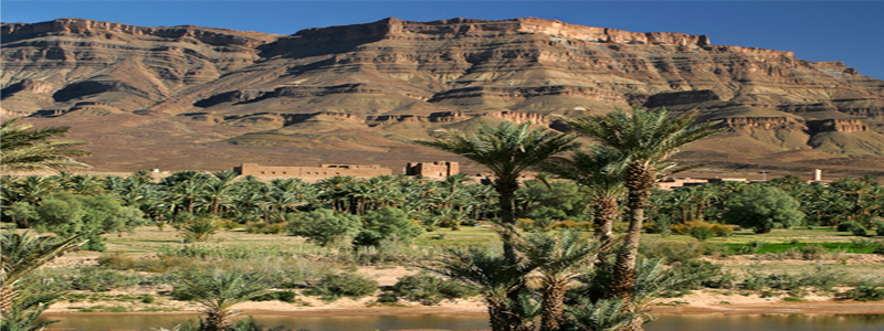 Marrakech Zagora 4 Days Tour